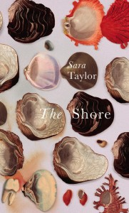 The Shore Sara Taylor